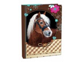 Box A4 s klopou Sweet Horse