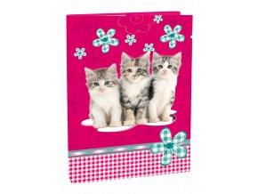 Box A4 Cats