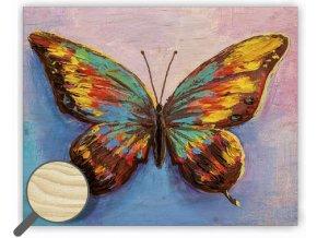 Dřevěný obraz na zeď Butterfly (s motýlem)