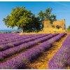 Kalendář Provence