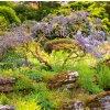 Kalendář Gardens