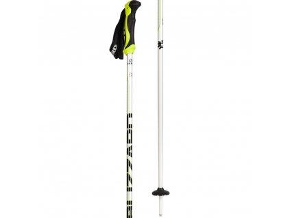 blizzard allmountain ski poles 5[1]