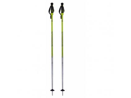lyzarske hole blizzard allmountain ski poles neon green shine silver[1]