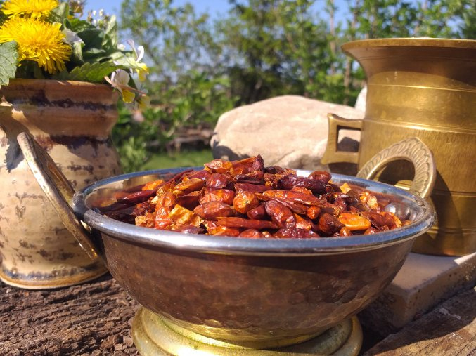 chilli papričky 2