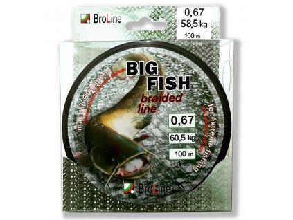 BROLINE Šňůra Big Fish 8x Dyn 250m
