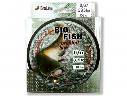 BROLINE Šňůra Big Fish 8x Dyn 167m