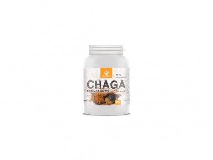 Chaga kapsle 100 cps