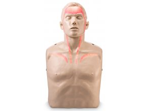 Resuscitační figurína dospělého Brayden s vizualizací průtoku krve