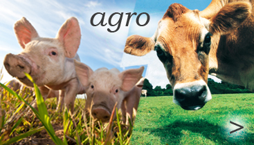 do sekce AGRO