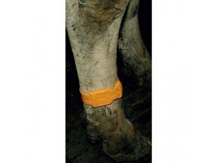 Páska plastová na nohy GEWA, oranžová