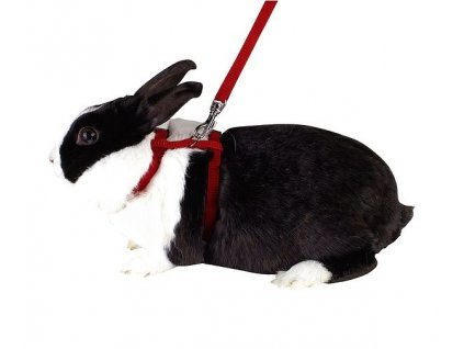 Postroj a vodítko pro králíka, 140 cm