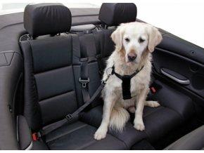 Bezpečnostní pás pro psy 50-70 cm