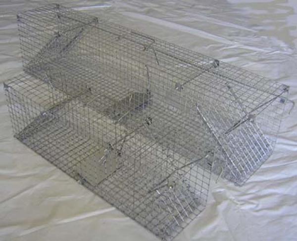 Sklopec - průchozí past na potkany 63 cm