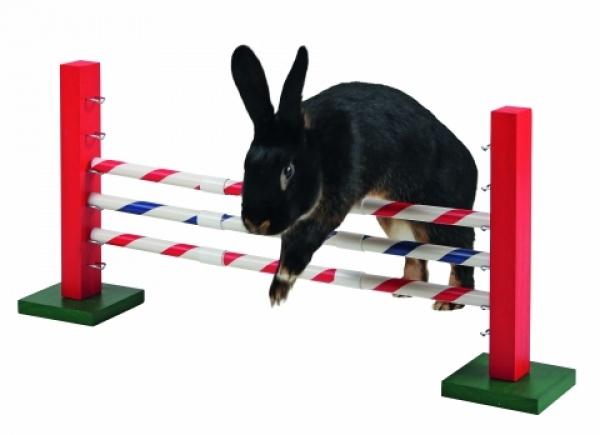 Agility střední překážka pro králíky a jiné hlodavce - králičí h