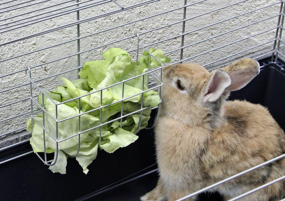 Jesle na seno, pro králíky, 25 x 17 cm