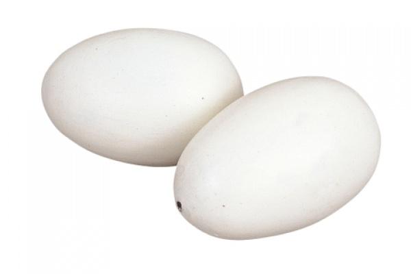 Vejce umělé větší, podkladek pro kachny a husy, plast