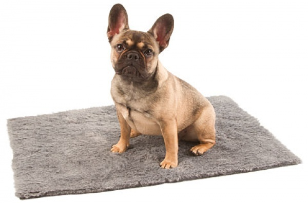 Podložka pod psy Furbed, vysoušecí deka, 75 x 50 cm