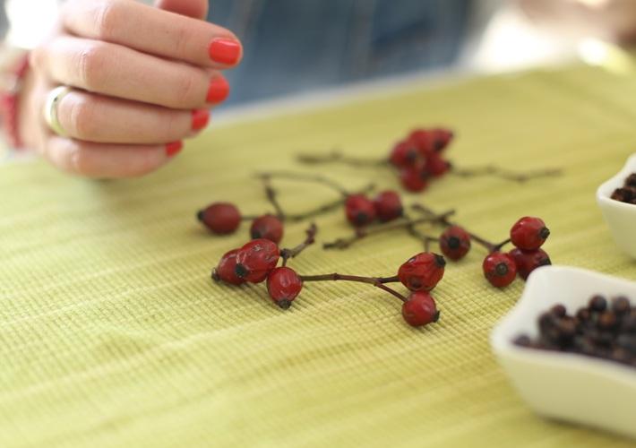 Ruža šípková - šípky - účinky a použitie