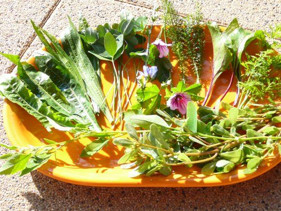 Zelené smoothie z byliniek
