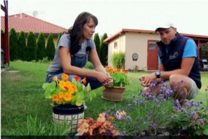 Jedlé kvety (relácia Hurá do záhrady)