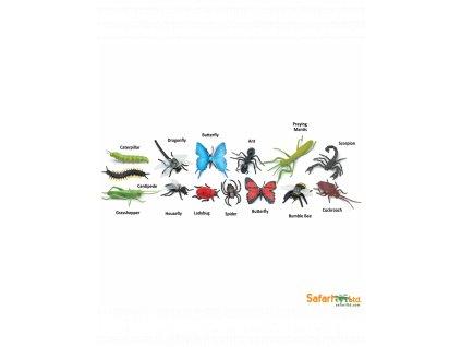 tuba hmyz