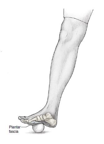 Ploska nohy - plantární fascie - odvalování míčku