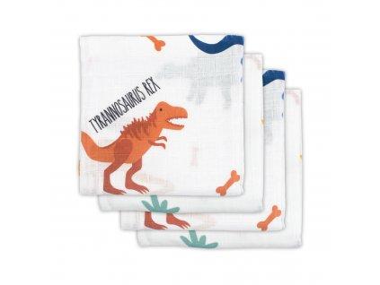 Plena Dinosaur (4ks)
