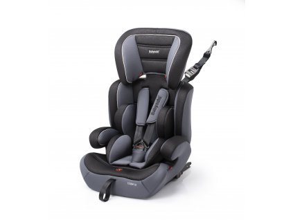 BabyAuto ZARAUZ FIX PLUS 123, embossed