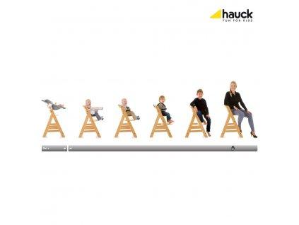 Hauck Alpha+ 2020 židlička dřevěná : grey