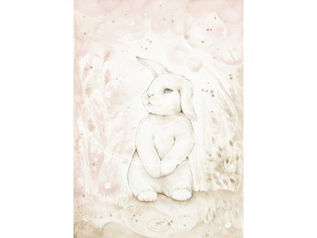 plakat lovely rabbit 50x70 01