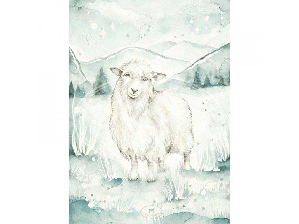 plakat lovely sheep 50x70 01