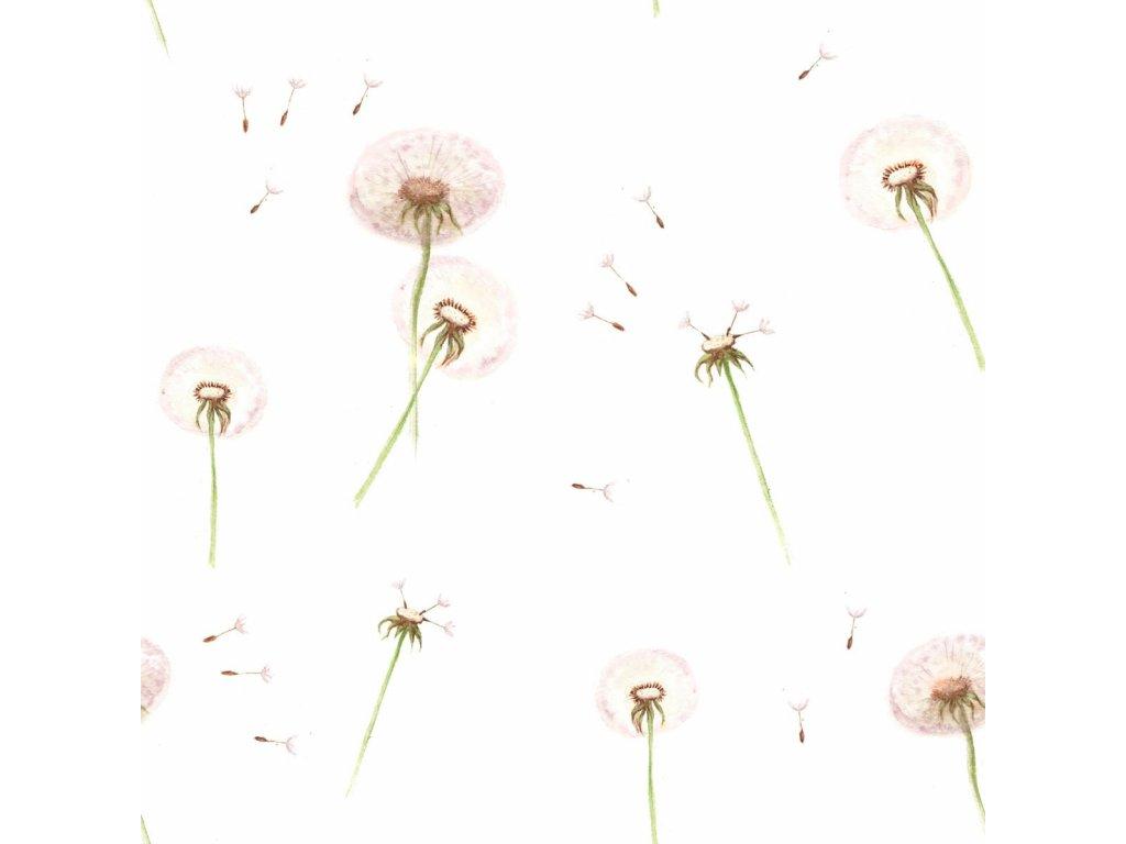 Dandelions wallpaper 001