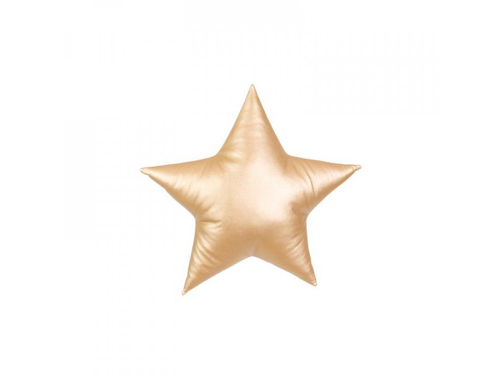 Polstarek hvezda zlata 1