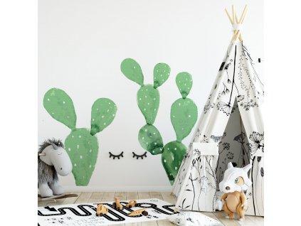 Samolepka na zed Kaktusy