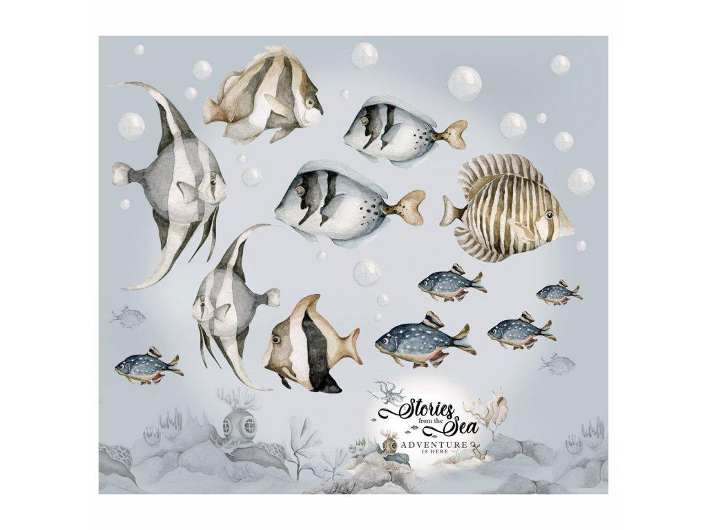 Dekornik Samolepka na zeď Fish