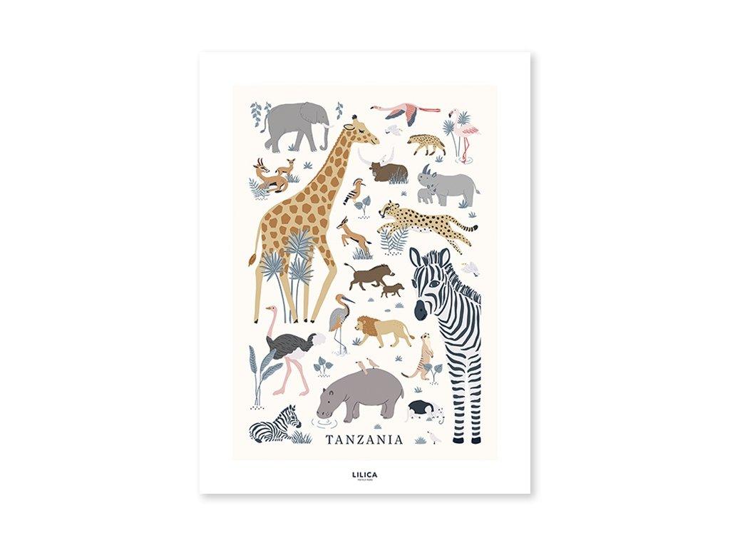 p0298 poster enfant savane jungle tanzania