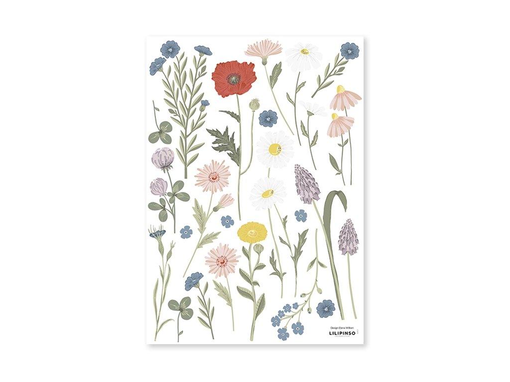 s1417 stickers fleurs coquelicot lilipinso