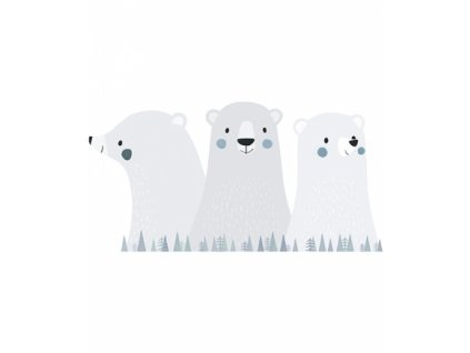 stickers grands ours s1315 xl