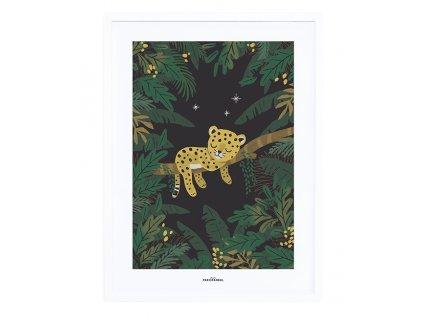 affiche bebe garcon jungle lilipinso p0294c