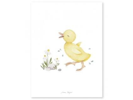 p0303 poster enfant canard jaune lucky duck