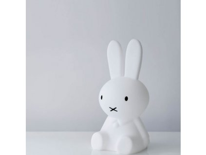 miffy original detail 3