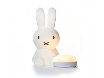 miffy first light 4