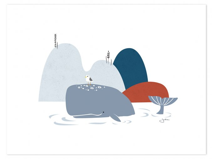 P0262 baleine