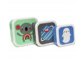 lunchbox set koala friends lb7