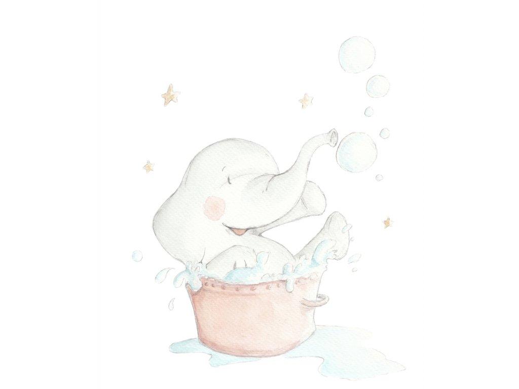 Sloník v kúpeľni