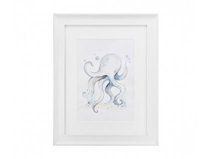 Obrázok chobotnica