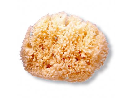 Suavinex přírodní mycí mořská houba střední