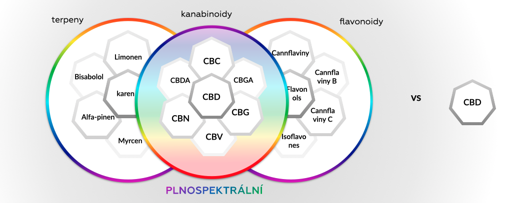 PLNESPEKTRUMvsCBD_1