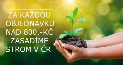 zasaď strom v ČR