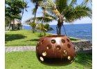 Doplňky z kokosu